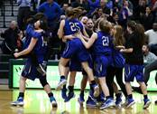 The Warren Blue Devils faced the Lake Zurich Bears in the Fremd Class 4A sectional girls basketball final on Thursday, Feb. 22 in Palatine.