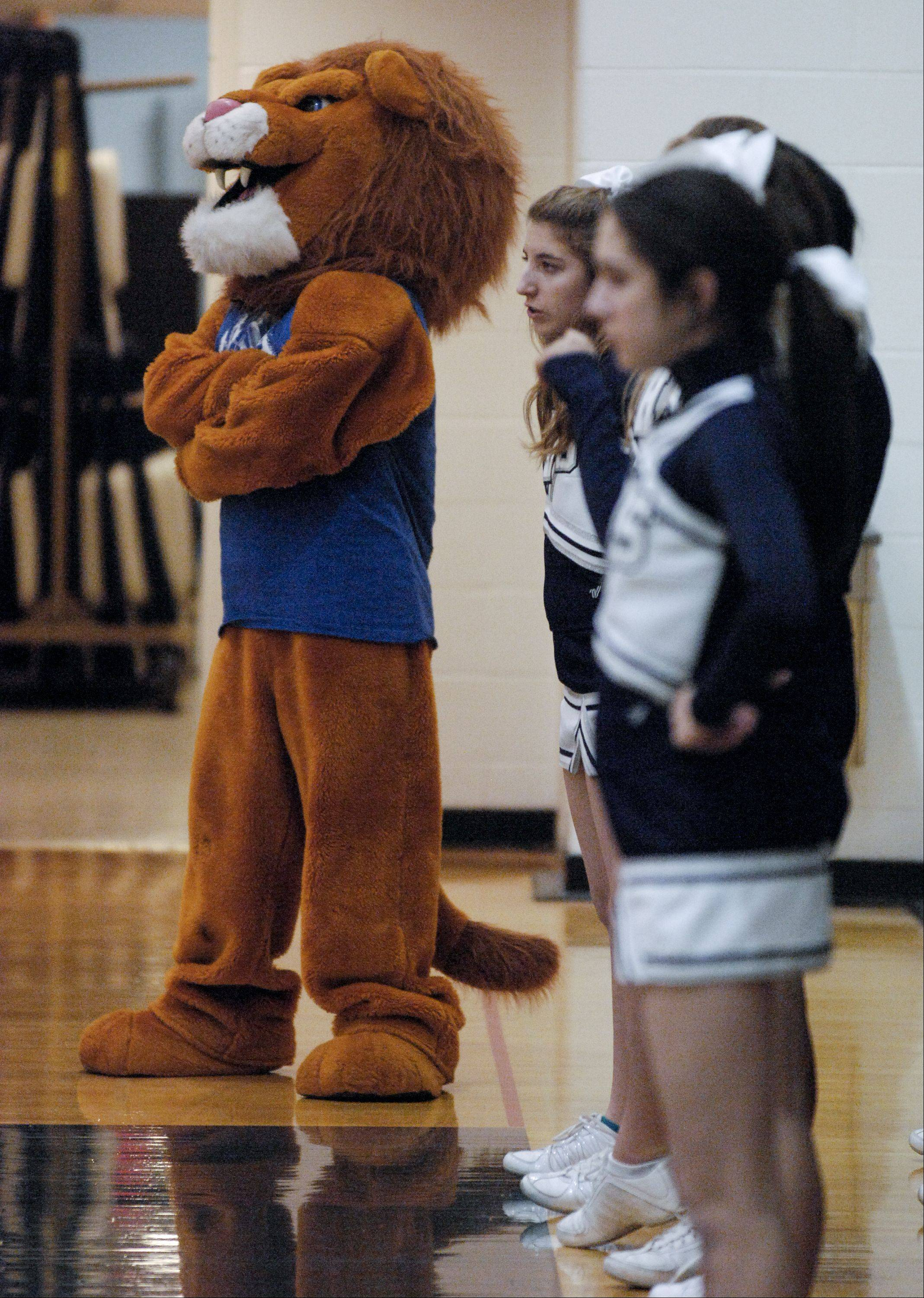 Lisle High School hosted Immaculate Conception High School Wednesday night for boys basketball.