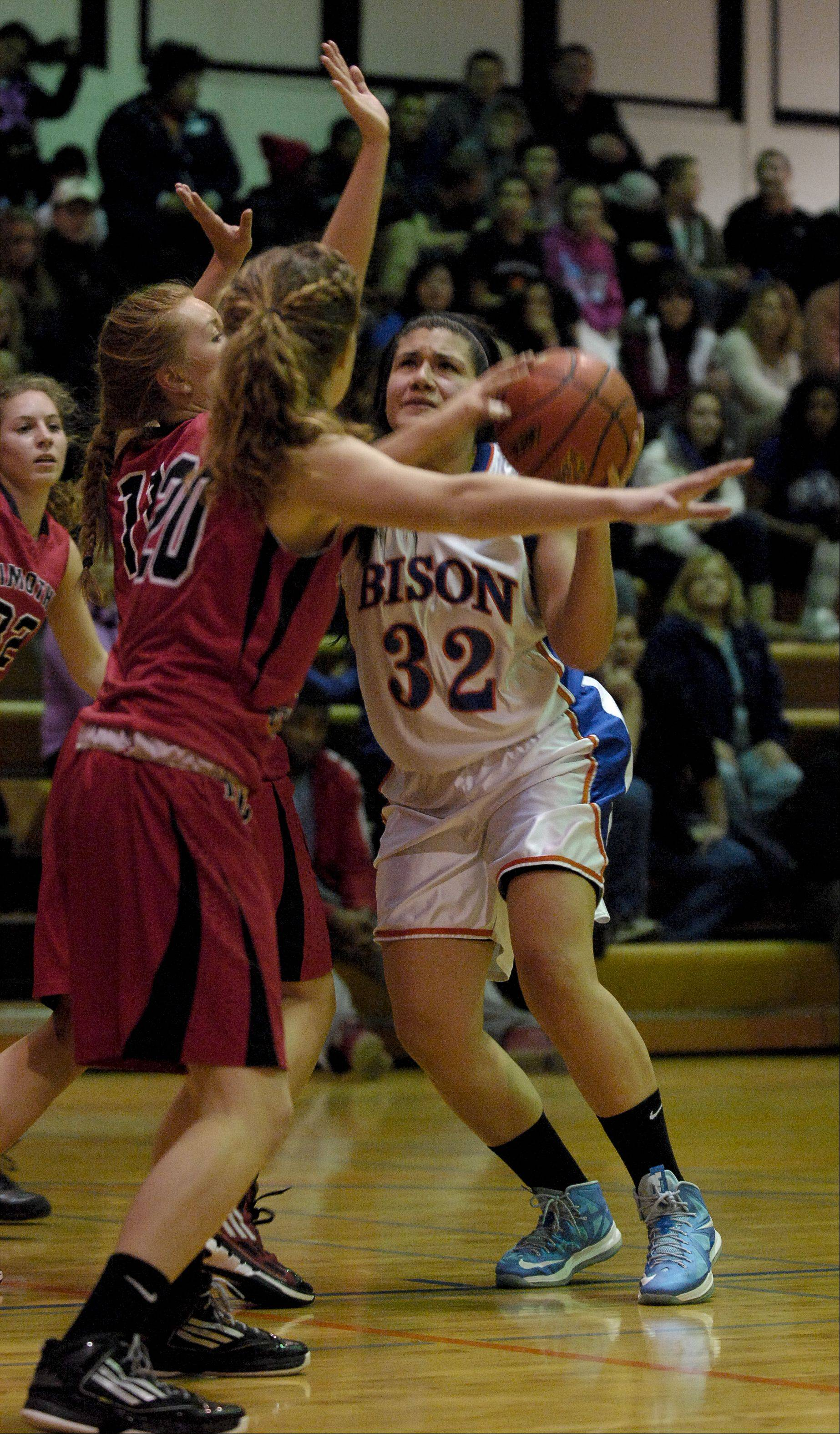 Fenton High School hosted Timothy Christian Thursday night for girls basketball.