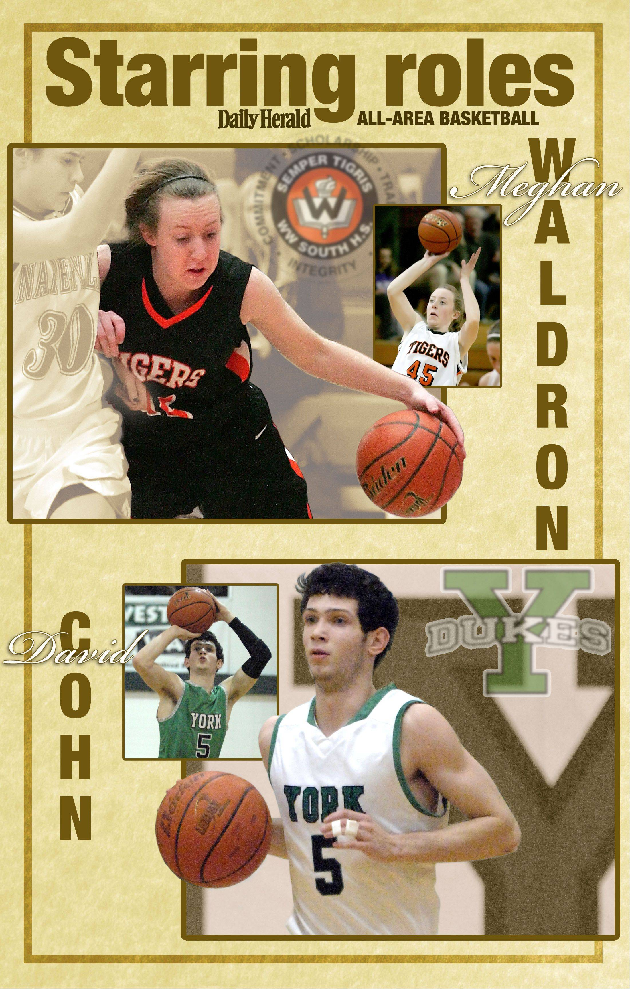 All-area Daily Herald basketball players in DuPage County are Meghan Waldron of Wheaton Warrenville South and David Cohn of York.