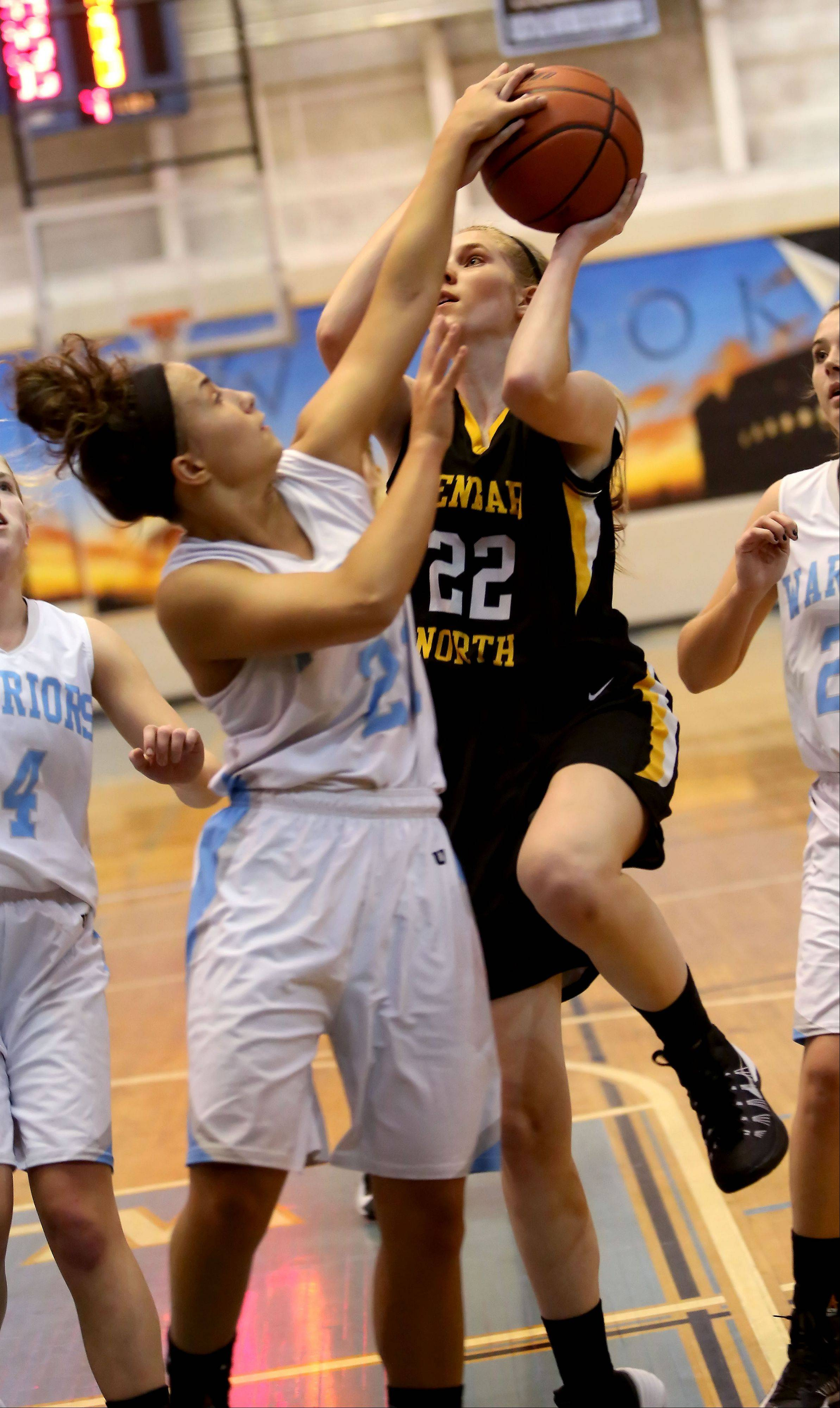 Glenbard North's Jennifer Deegan tries to shoot as Willowbrook's Olivia Domin blocks during girls basketball on Tuesday in Villa Park.