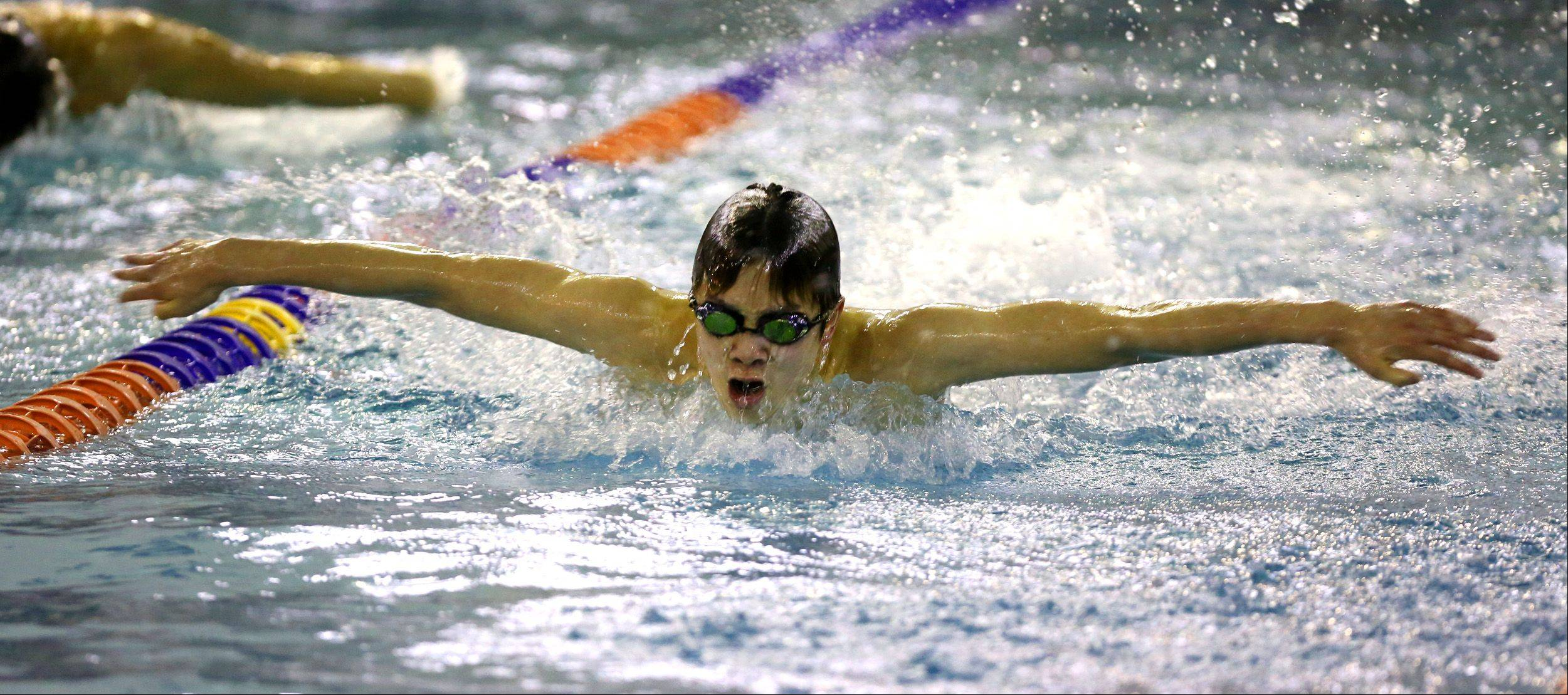 Daniel White/dwhite@dailyherald.comNaperville North's Jeff Leu swims the 100 yard butterfly race during the Boys DVC swim meet at Naperville North.