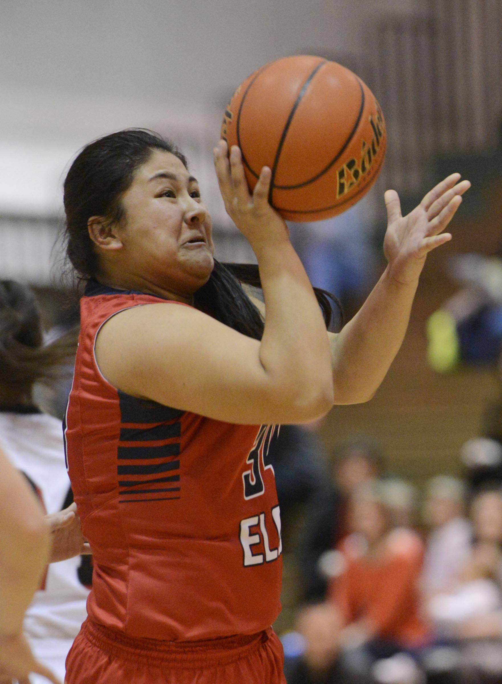 Images from the South Elgin vs. Huntley girls basketball Class 4A sectional semifinal Tuesday, February 25, 2014 in Crystal Lake.