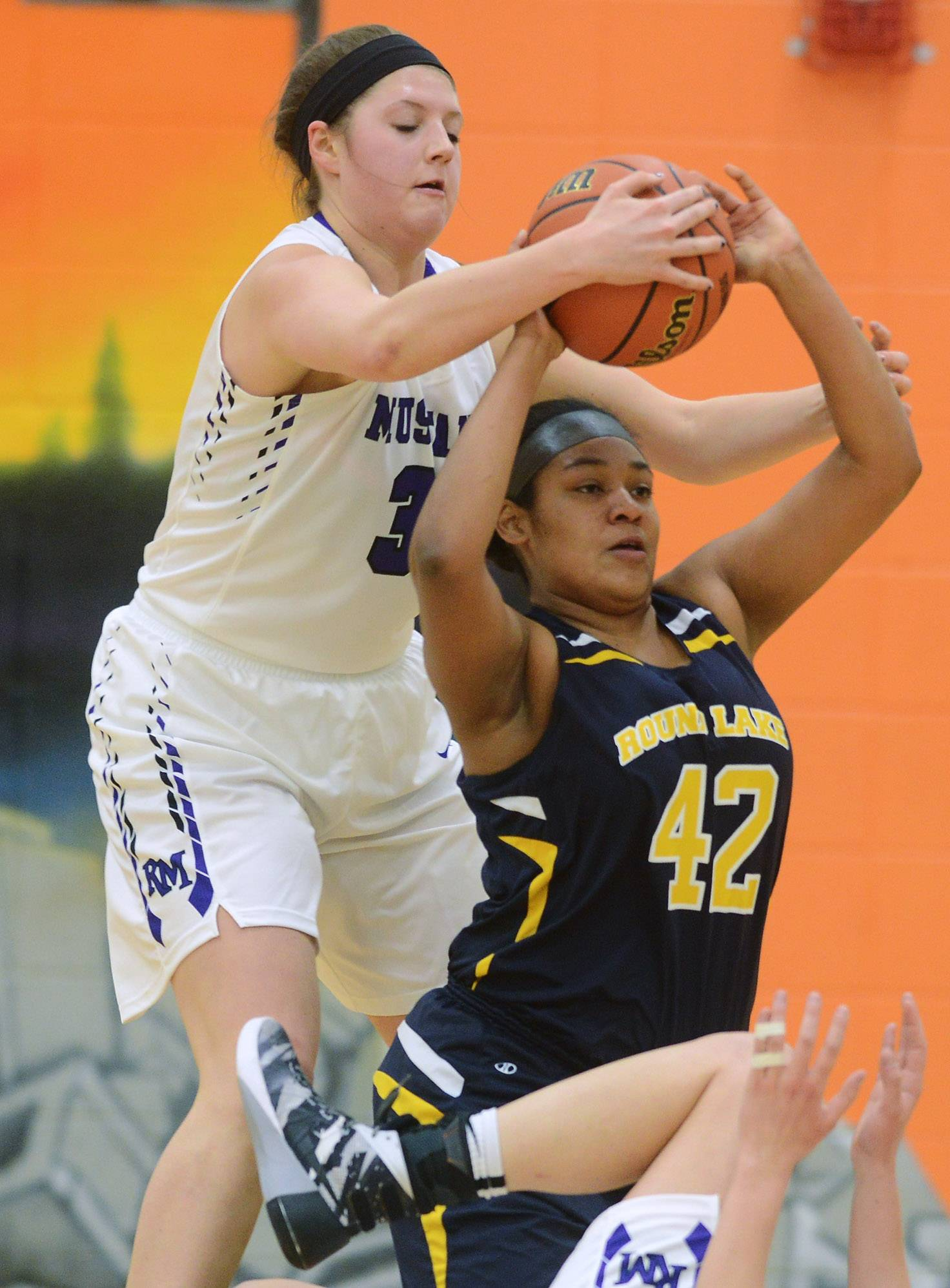 Rolling Meadows' Katherine Nolan, here taking the ball from Round Lake's Tatyana Steadman during the Hersey regional play last season, will continue her basketball efforts at Loyola University after her final prep season.