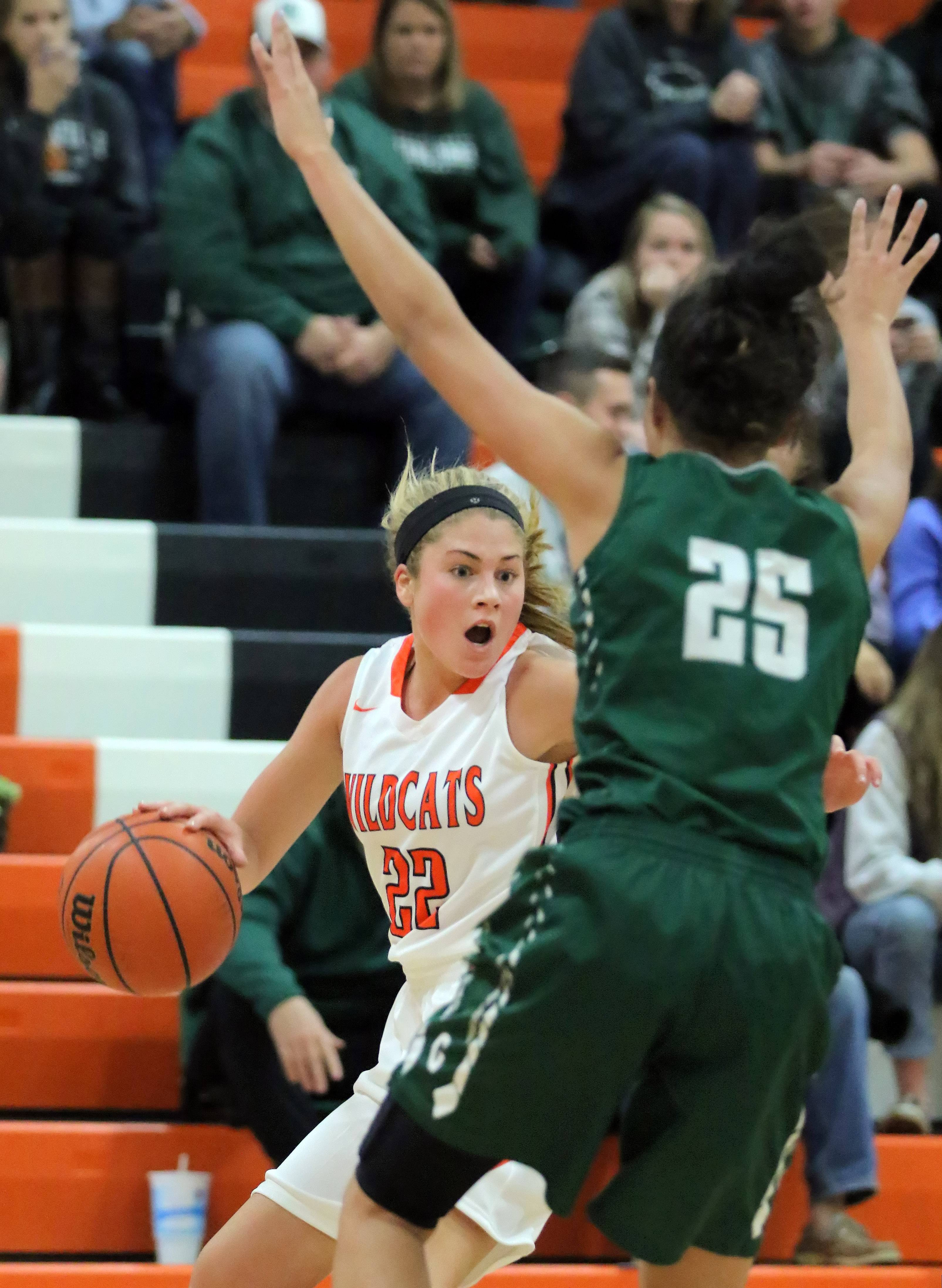 Libertyville's Riley Weis, left, tries to drive past Grayslake Central's Ania Barnes on Tuesday night at Libertyville.