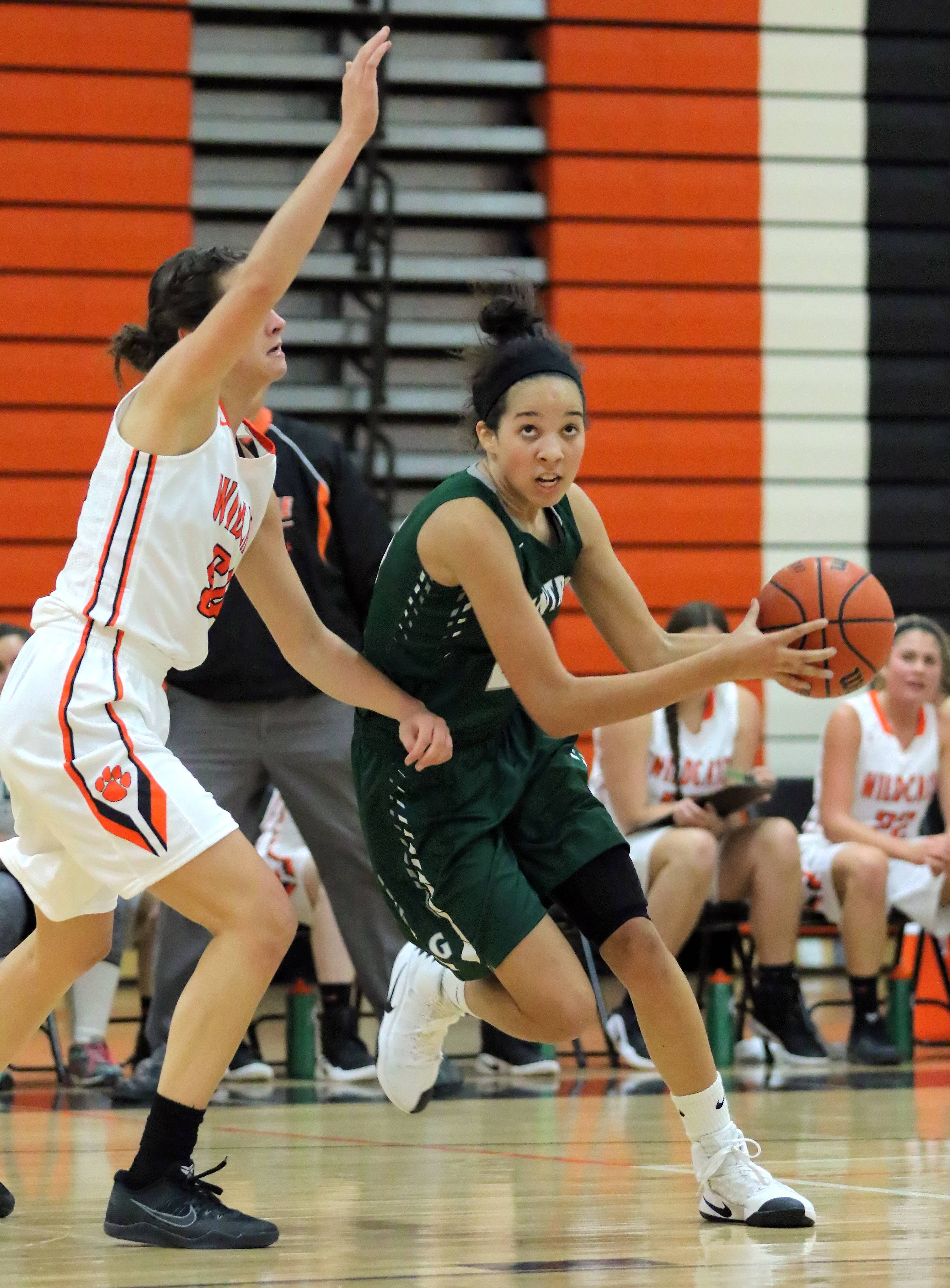 Grayslake Central's Ania Barnes, right, drives on Libertyville's Claire Keefe on Tuesday night at Libertyville.