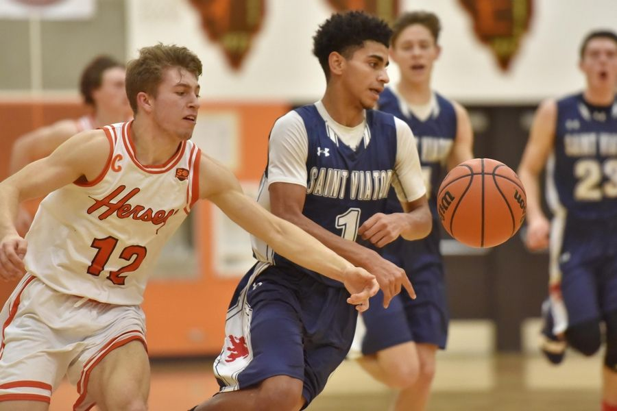 Hersey's Matt Hanushewsky slaps the ball from St. Viator's Treyvon Calvin Saturday in a boys basketball game in Arlington Heights.
