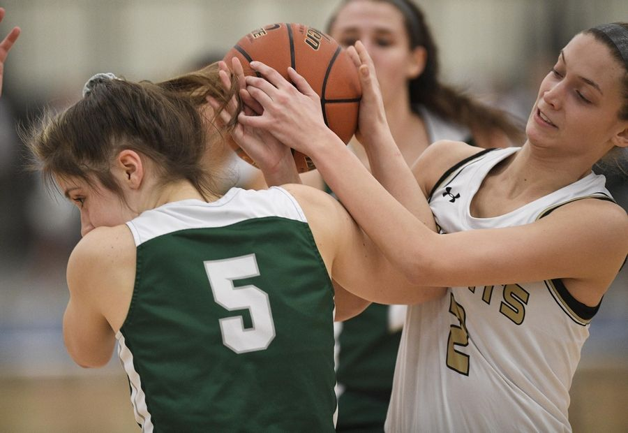Grayslake North's Sarina Low and Grayslake Central's Monica Schleg, left, battle for the ball in a girls basketball game at Central High School Wednesday.