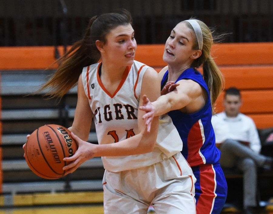 Crystal Lake Central's Lilyann Penza, left, looks to pass around Dundee-Crown's Katelyn Skibinski during Wednesday's girls basketball game in Crystal Lake.