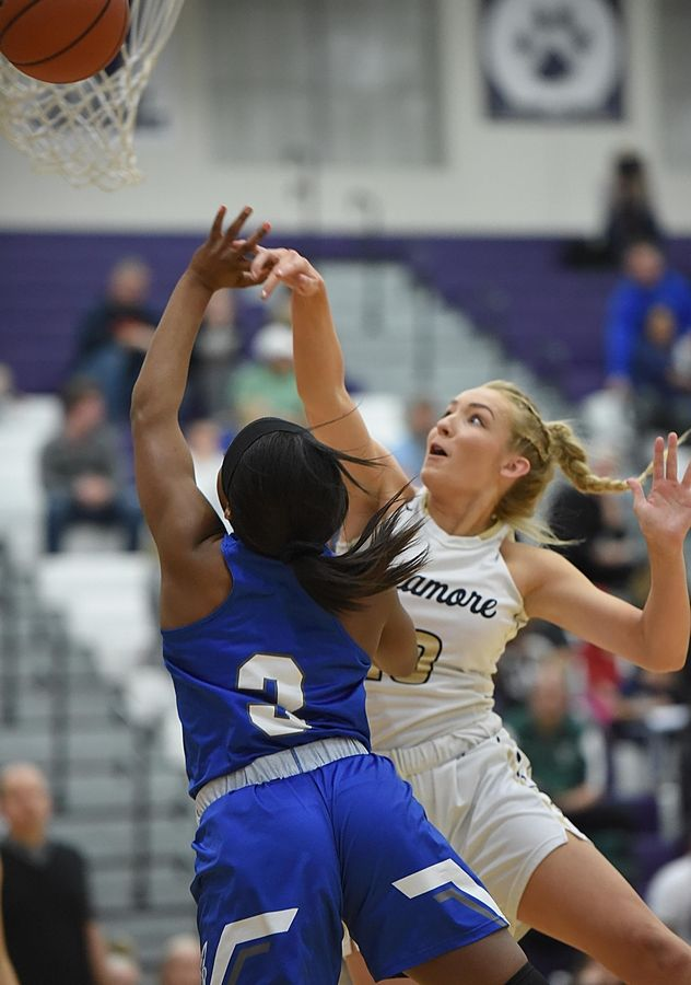 Sycamore's Kylie Feuerbach fouls Burlington Central's Elana Wells in the Class 3A Hampshire girls basketball sectional semifinal game Tuesday.